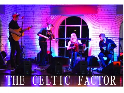 The Celtic Factor Trad Band with Audionetworks Ireland